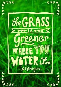 neil-barringham-the-grass-is-greener